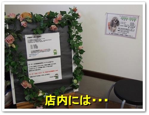 20131117_242.jpg