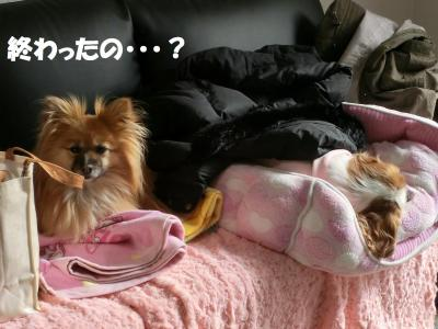 002繝シ繧ウ繝斐・_convert_20140219223918