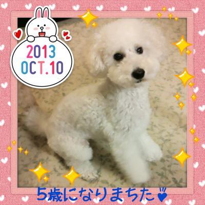 2013-10-10-21-00-38_deco.jpg