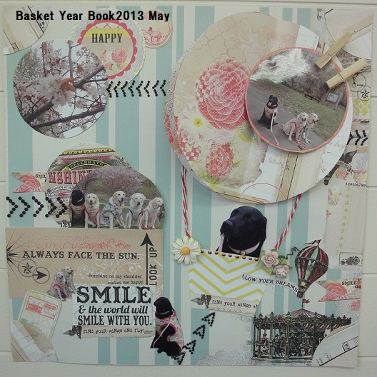 basket year book2013 may
