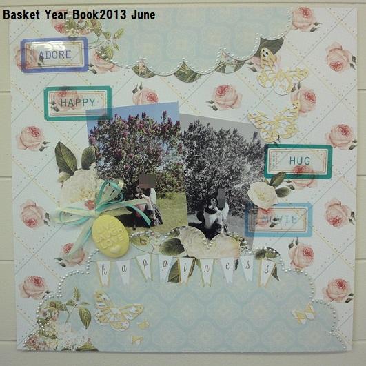 basket year book2013 june