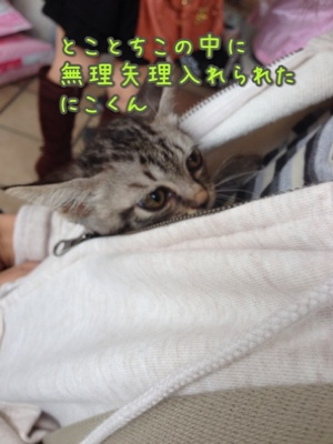 fc2blog_20140921194526fce.jpg
