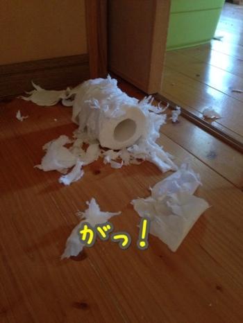 fc2blog_2014101811272941d.jpg