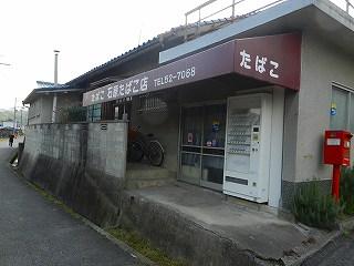 s-DSCN3348.jpg