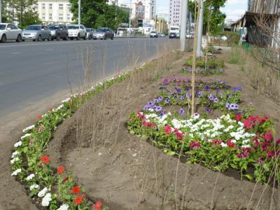 FlowerUB2
