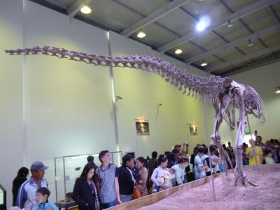 Tarbosaurus7
