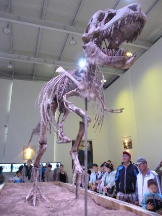 Tarbosaurus10