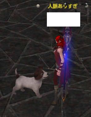 犬になつかれた