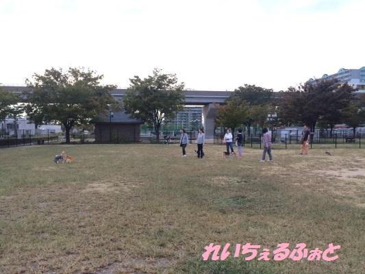 DPP_5739.jpg