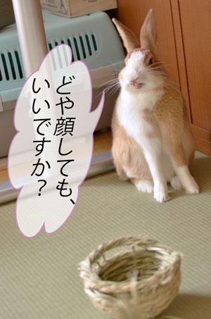 jjj_DSC8749.jpg
