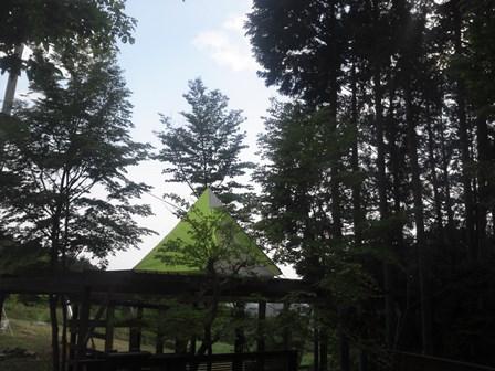 森のたね テントデッキ