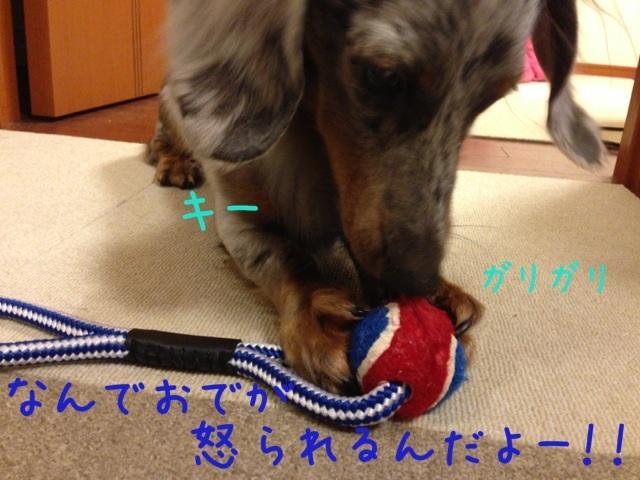 image_201308281857122d9.jpg