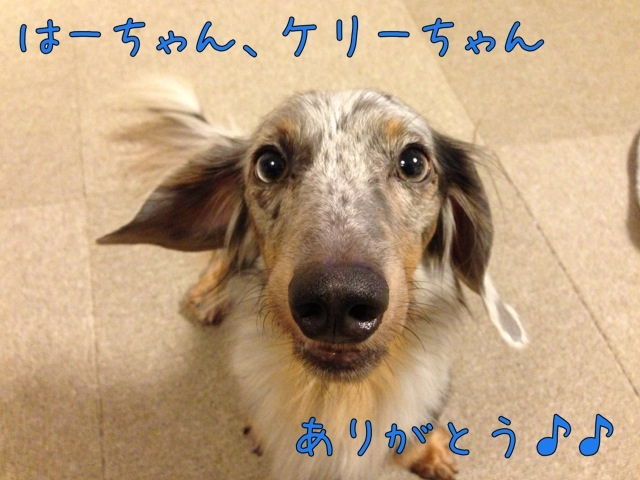 image_20130830085724616.jpg