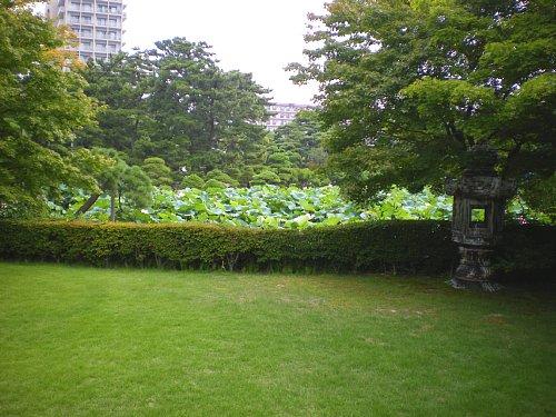 燕喜館・庭