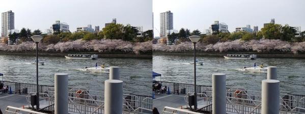 毛馬桜之宮公園⑦(平行法)