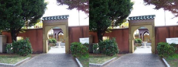 鶴見緑地公園④(交差法)