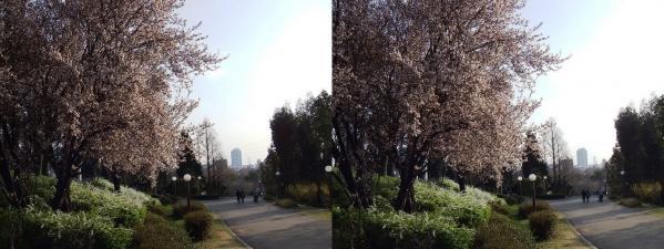 鶴見緑地公園③(平行法)