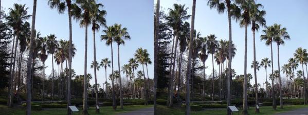 鶴見緑地公園②(平行法)