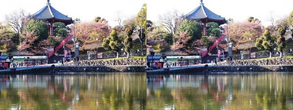 興福寺 南円堂・猿沢池(平行法)
