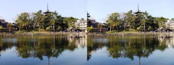興福寺 五重塔・猿沢池(平行法)