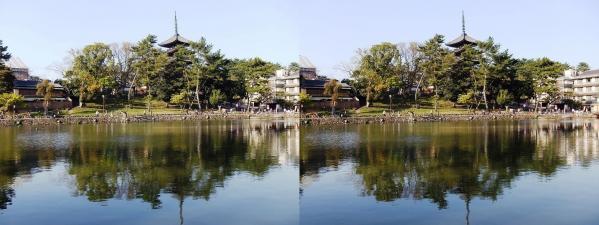 興福寺 五重塔・猿沢池(交差法)