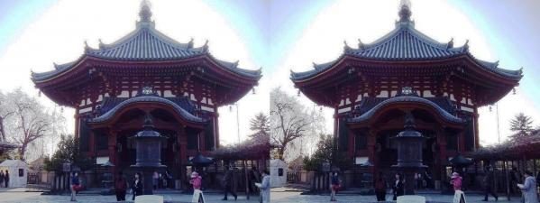 興福寺 南円堂(交差法)