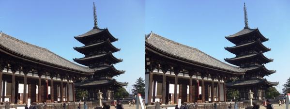 興福寺 五重塔・東金堂(平行法)