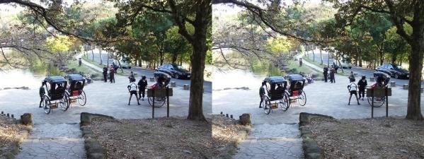 奈良公園 人力車②(平行法)