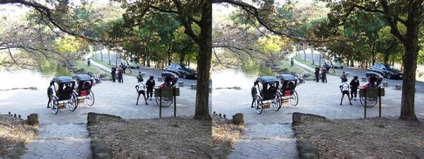 奈良公園 人力車②(交差法)
