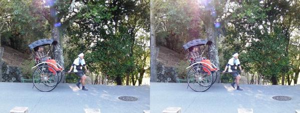 奈良公園 人力車①(平行法)