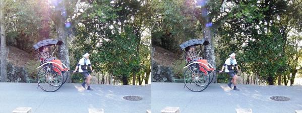 奈良公園 人力車①(交差法)