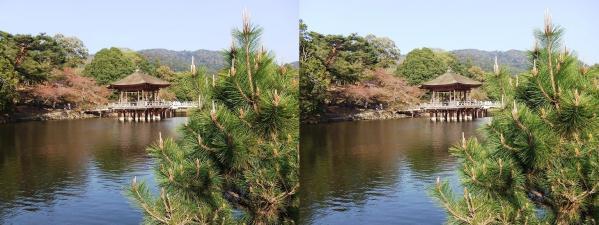奈良公園 浮見堂・鷺池③(平行法)
