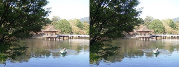 奈良公園 浮見堂・鷺池②(平行法)
