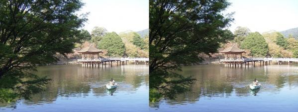 奈良公園 浮見堂・鷺池②(交差法)