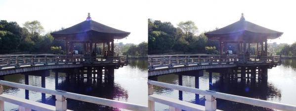 奈良公園 浮見堂・鷺池①(平行法)