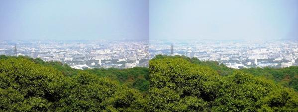 神呪寺からの眺望②(平行法)