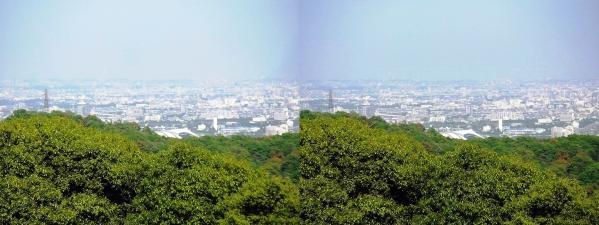 神呪寺からの眺望②(交差法)