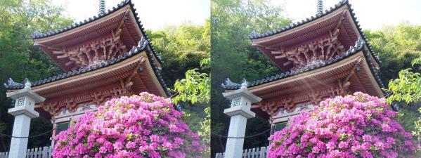 神呪寺⑨(平行法)