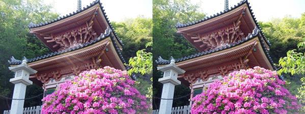 神呪寺⑨(交差法)