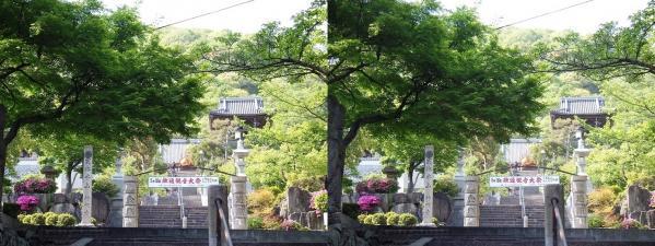 神呪寺②(平行法)