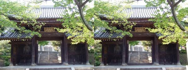 神呪寺①(交差法)