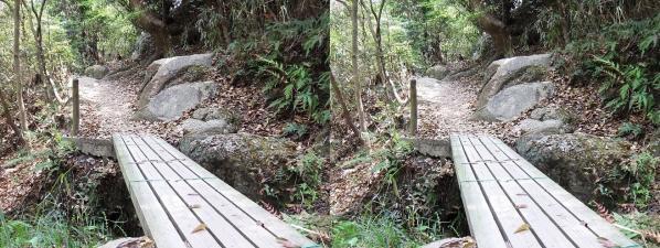 甲山ハイキングコース③(平行法)