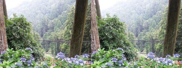 比叡山林道①(平行法)