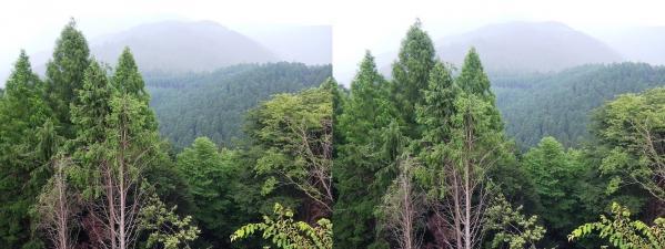 比叡山頂①(平行法)