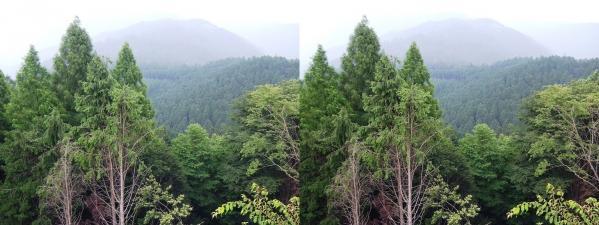 比叡山頂①(交差法)