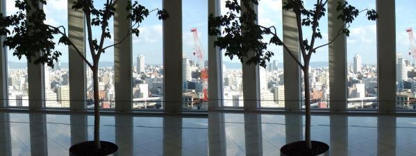 阪急オフィスタワー15Fスカイロビー①(平行法)