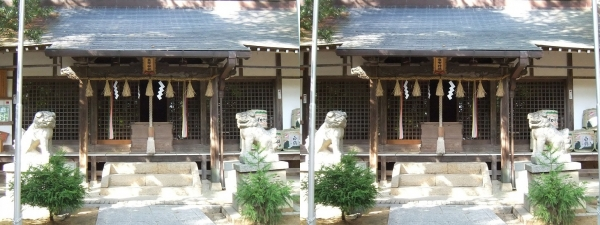 売布神社③(交差法)