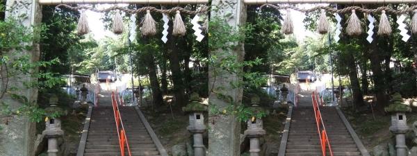 売布神社②(交差法)
