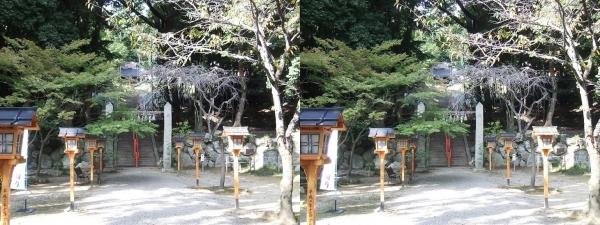 売布神社①(平行法)