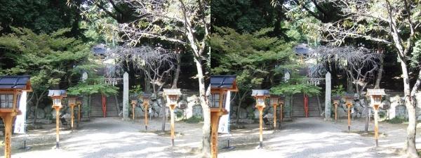 売布神社①(交差法)